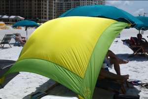 gecko picnic blanket review