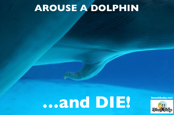 arouse a dolphin and die