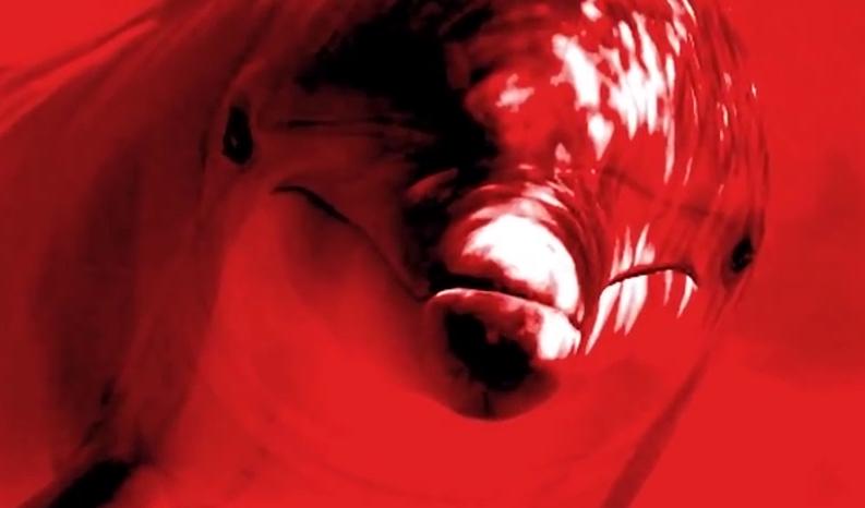dolphin rape cave myth