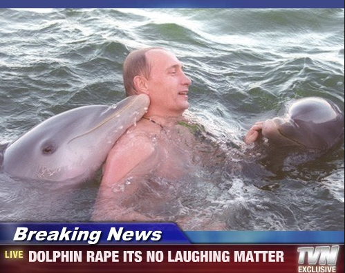 Girls having sex with dolphins this intelligible