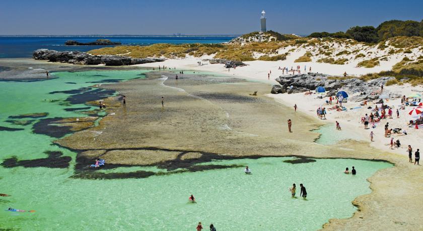 rottnest island south australia