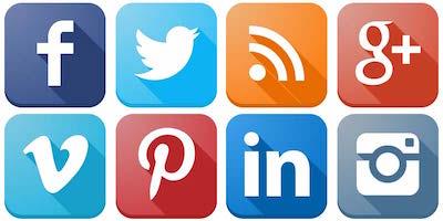 birds on social media