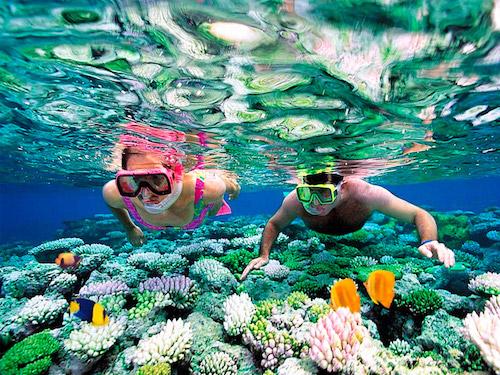 cressi snorkel