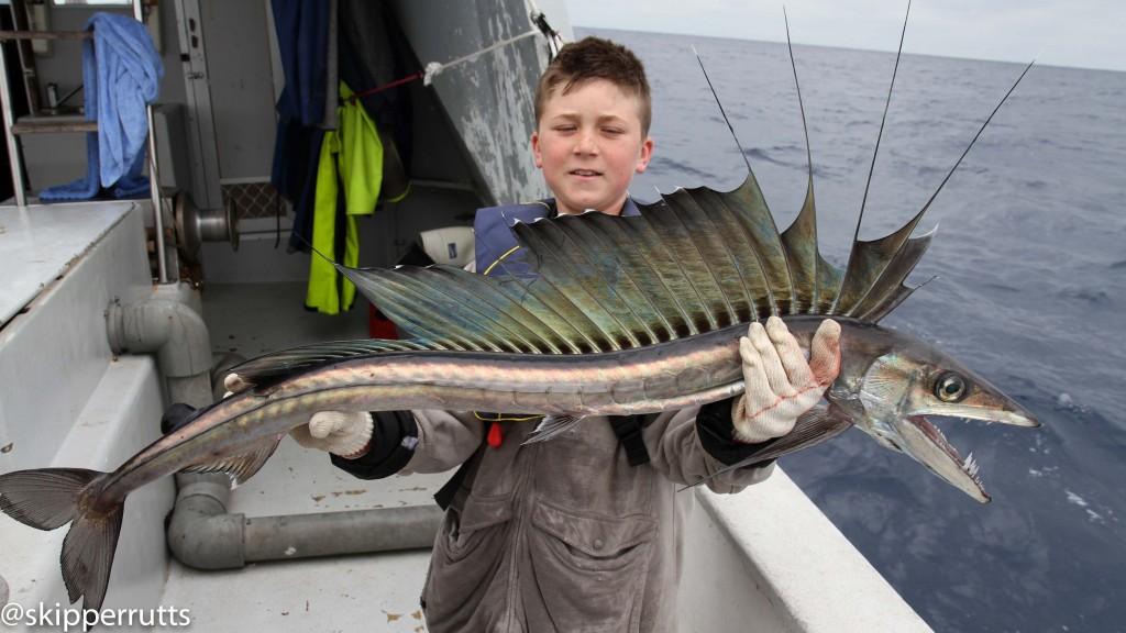 longnose lancefish