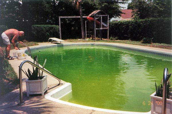 swimming pool without chlorine