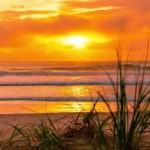 All About Gold Coast Australia (TMI Edition)