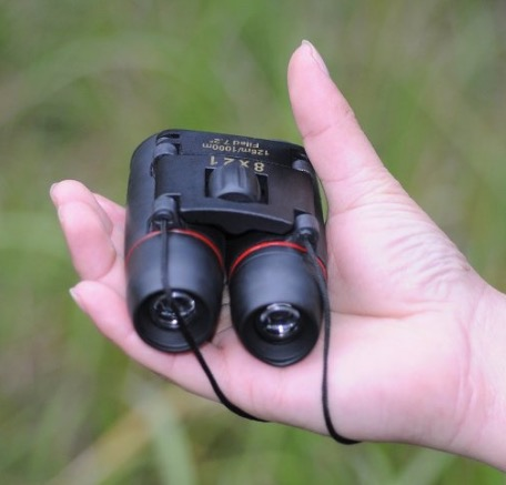 VicTsing Outdoor Travel 8 x 21 Zoom Mini Binoculars Review