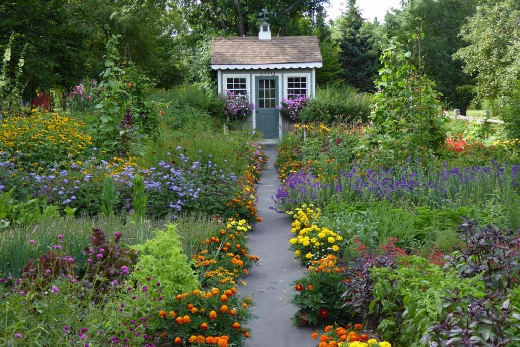 wild herb garden
