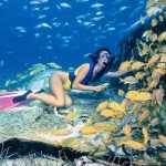 3 Of The Best Snorkeling Spots In The Caribbean