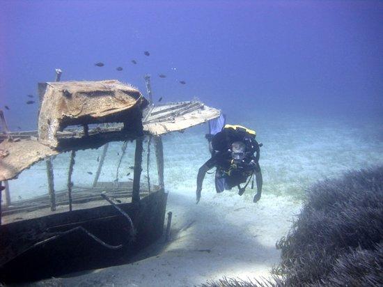 seahorse diving centre fethiye turkey