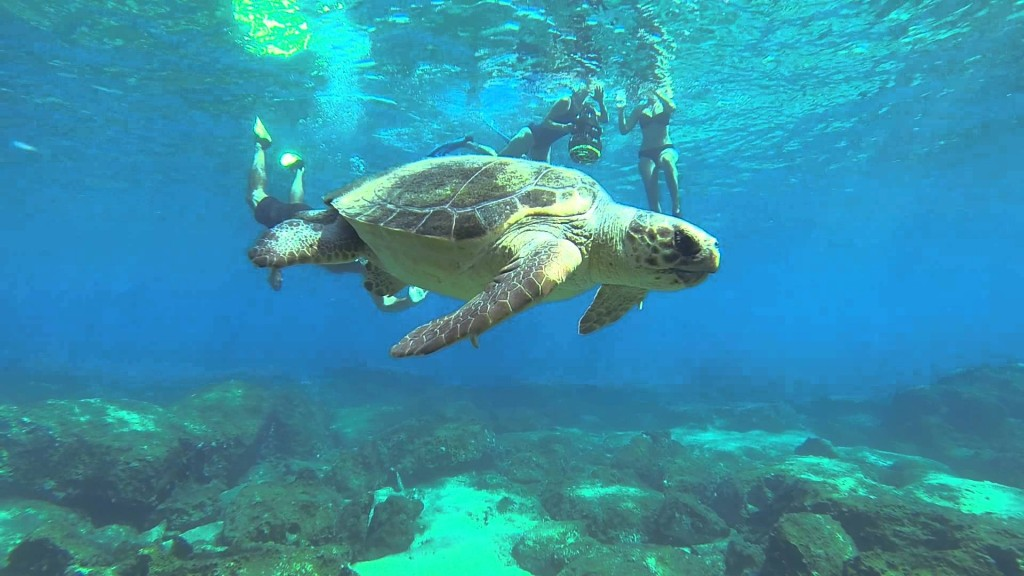 Best Beaches In Turkey For Snorkeling