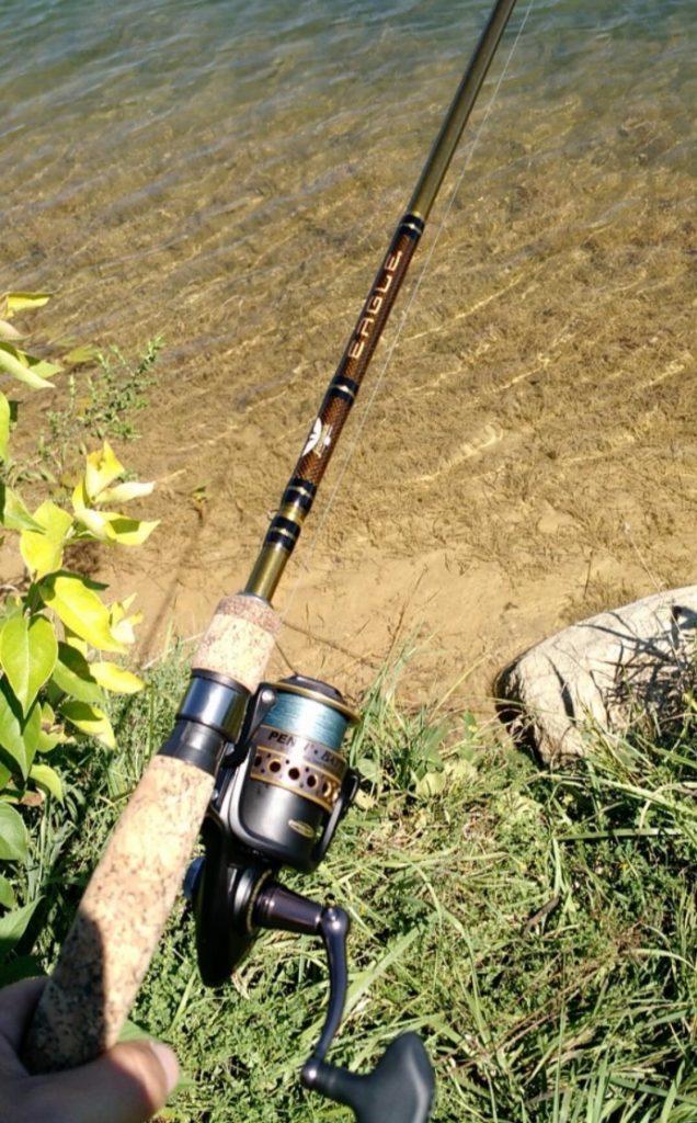 Penn battle ii fishing reel review for Battle fish 2