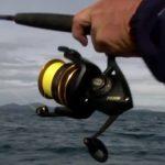 Penn Battle II Fishing Reel Review