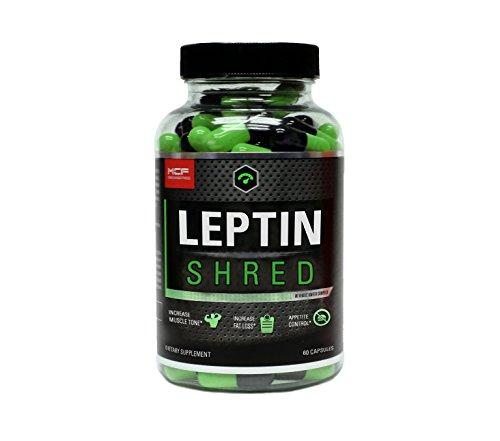 leptin shred