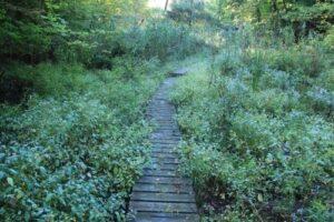 Elgin Hiking Trail