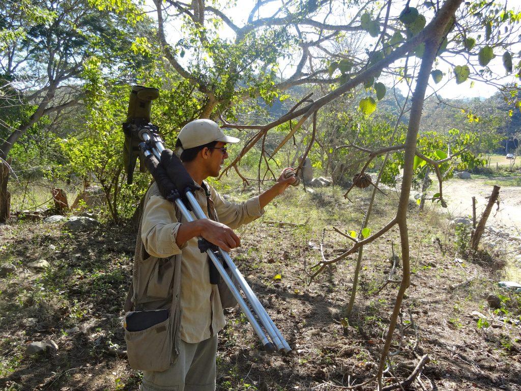 Luis Morales executive director of BirdingSanPancho Mexico