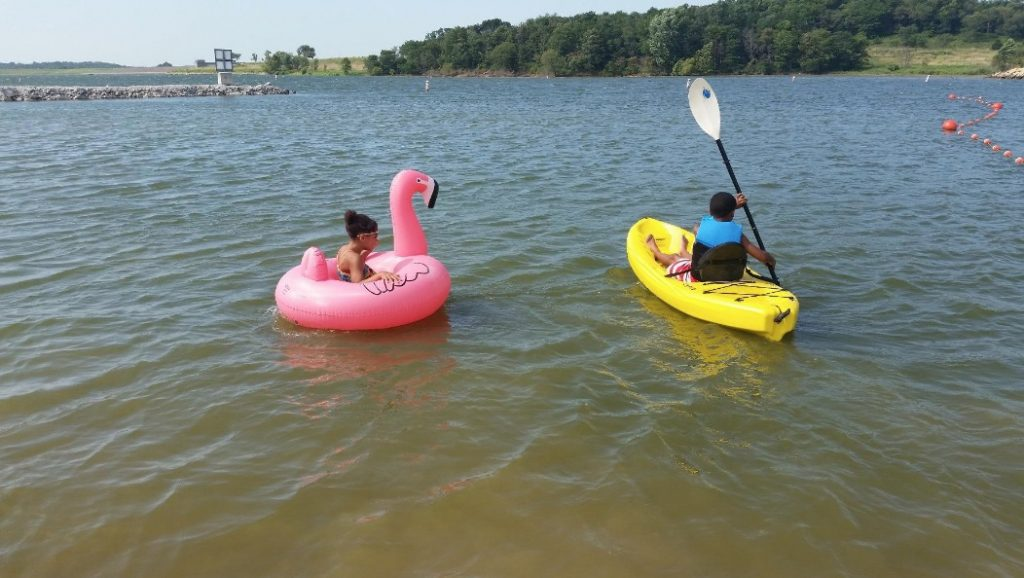 GoFloats Flamingo Pool Float Party Tube, Float in Style (for Adults and Kids)