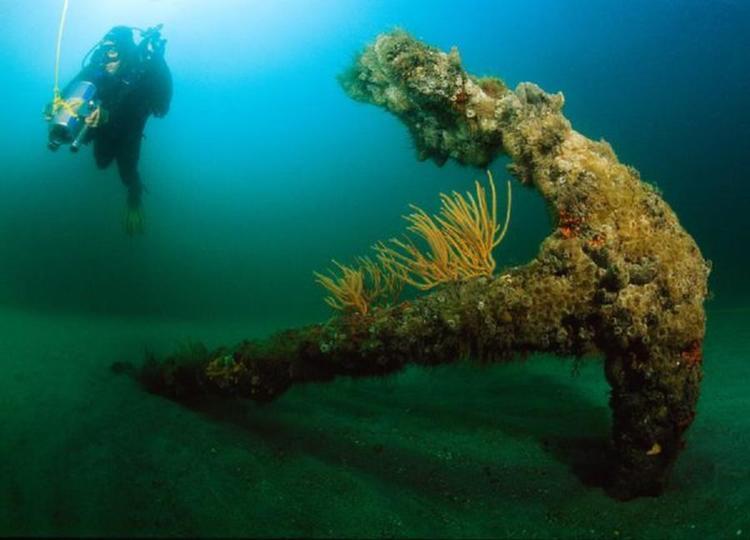 ship anne anchor