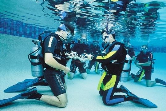 padi diving training