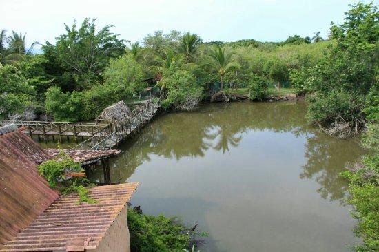 santuario-de-cocodrilos